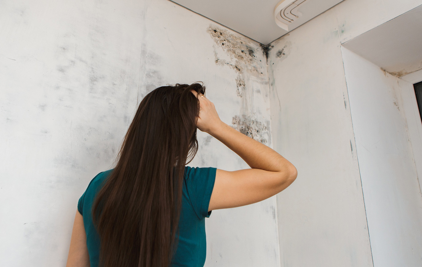 black mold exposure symptoms